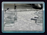 071 ice sled and dogs2